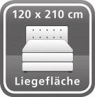 120 x 210 cm
