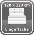 120 x 220 cm